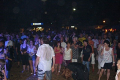 sommerparty_2010_072
